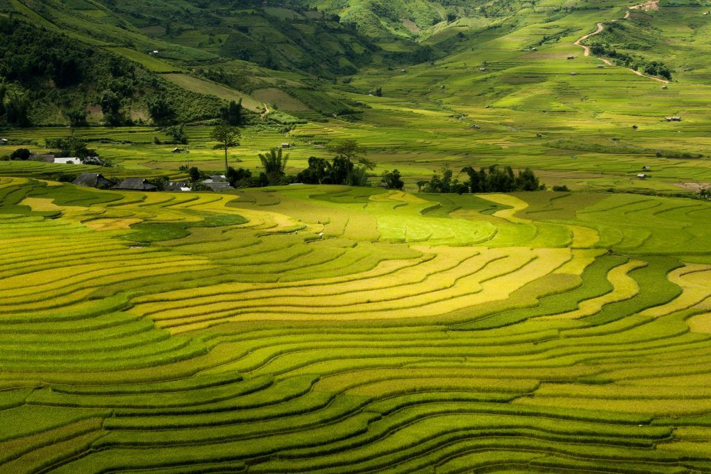 TOP 11 IMPORTANT THINGS YOU SHOULD KNOW BEFORE VISITING VIETNAM